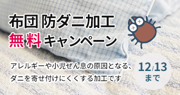 布団防ダニ無料キャンペーン